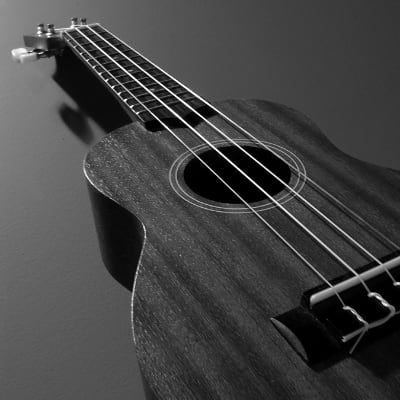 Photo of a Ukulele